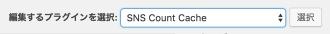 sns-count-cache_19